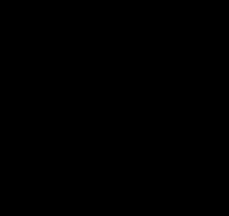 Initial-logo i sort